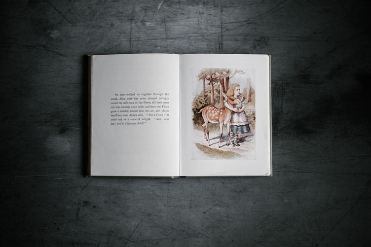 A picture book.