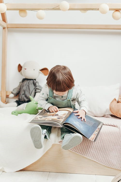 Learning Through Pictures: Here's Why Picture Books Are Perfect for Your Toddler